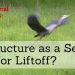 Call for Papers: Infrastructure as a Service -- Ready for Liftoff?